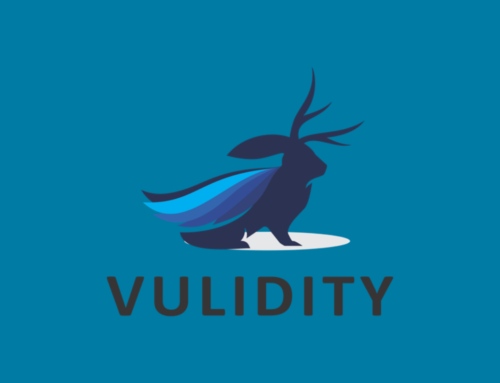 Vulidity – IT Sicherheit mit Perspektive